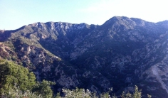 One of the best hikes near LA is the Echo Mountain trail