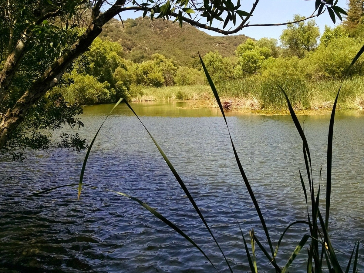 Hiking trails in Malibu don't only have ocean water but also lake water