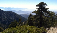Great views from the Mount Baldy summit trail near Los Angeles
