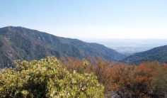 The best hiking trails of LA would be empty if it didn't include the Santa Anita Canyon Loop view when you near the summit