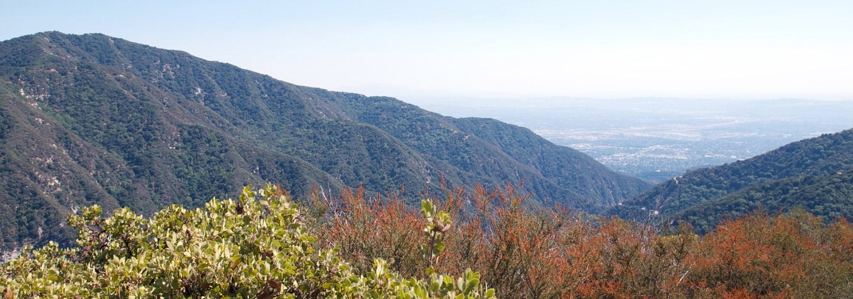 Top 5 Hiking Trails in Los Angeles on Mountain Terrain