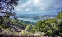 Angel Island - Peak of Mount Livermore